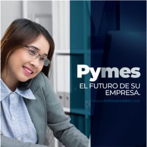 Software Contable Pymes - Software GBS